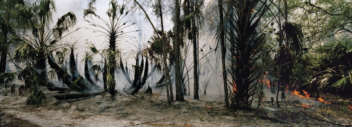 Fire In the Swamp 2, 2007