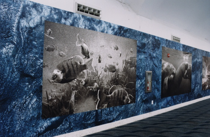 Aquascapes: Miami Seaport Project, 2002 (detail)