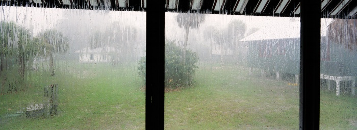 Rain from the Porch, 2009